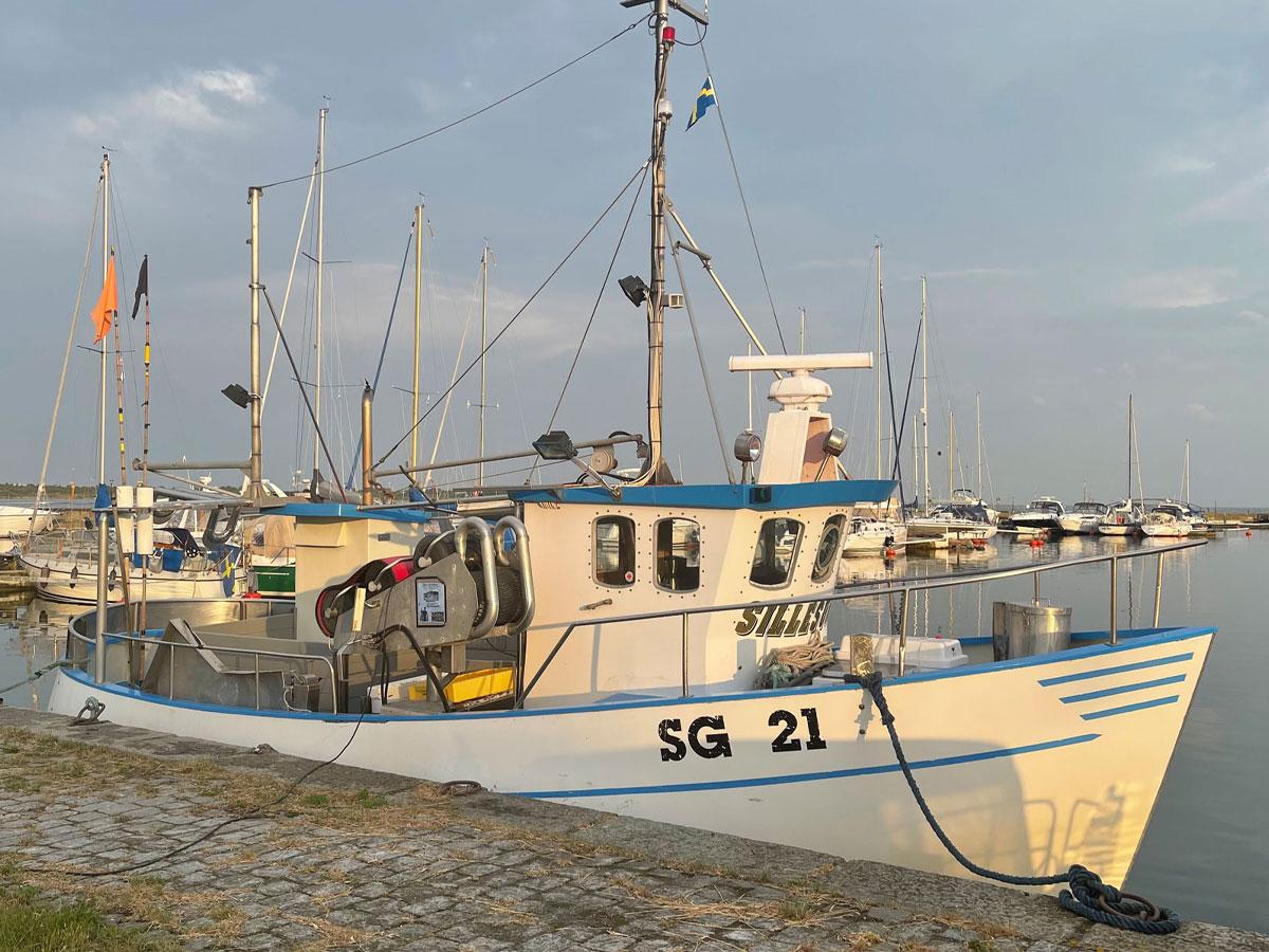 Siretorp-willa-nordic-sommar-0-06